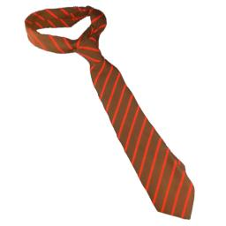 Selsted School Tie