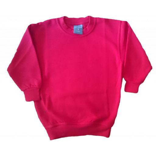 Saltwood PE Plain Sweatshirt